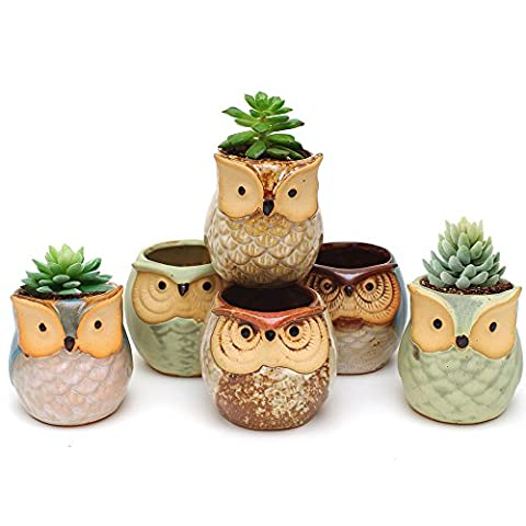 IMZ Set of 6 Owl Design Mini Ceramic Pot, Succulent Plant Pot, Cactus Planter Pot, Window Sill Bonsai Flower Pot/Container with a Drainage Hole