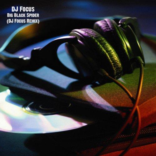 Big Black Spider (DJ Focus