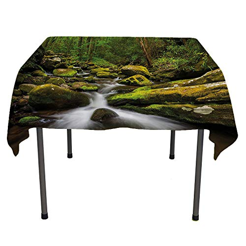 (Nature, Table Cover Spillproof TableclothDeep Down in The Forest with Stream by Mossed Rocks Jungle Park Landscape, for Outdoor and Indoor Use, 54x54 Inch Fern and Army Green)