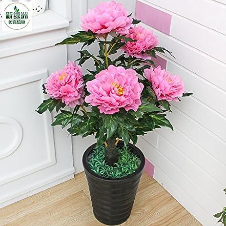 Amazon.com: Artificial flowers bonsai plants simulation bonus palm ...