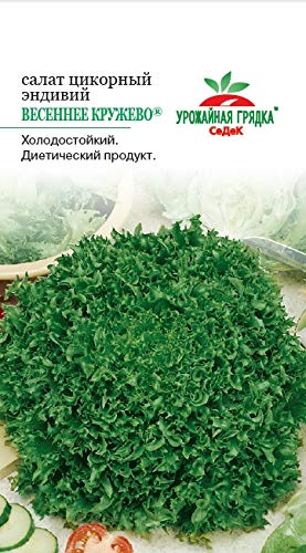 Russian Salad Spring Lace (Endive). Euro 0.5 ()