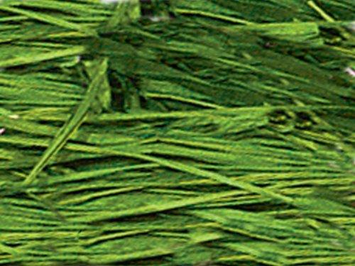 Raffia - APPLE GREEN 6 oz Bag100% Natural Vegetable Fibers (3 unit, 1 pack per unit.)