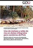 Uso de Melaza y Sebo de Res en Dietas Integrales para Corderos de Pelo, Arnoldo González Reyna and José Fernando Vázquez Armijo, 3846563846