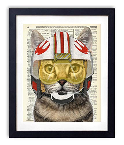 - Rebel Pilot Cat Star Wars Inspired Kids Bedroom Wall Decor, Vintage Wall Art Upcycled Dictionary Art Print Poster For Kids Room Decor 8x10 inches, Unframed