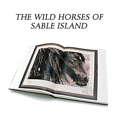 The Wild Horses of Sable Island Rare Photography Book (Signed, Limited Edition). Exclusively Hand-Numbered, Autographed Copies by Roberto Dutesco from a Limited Edition of 2,500 Copies