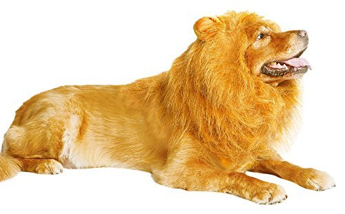 Thedogloveit Dog Hats Lion Mane, Interesting Costumes Gift, Wig, Medium to Large]()