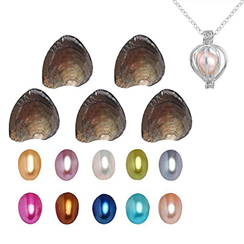MIMINUO Freshwater Cultured Love Wish Pearl Oyster Pearls with Pearl Inside ,DIY Pearl Necklace Kit, Anniversary/ Christmas/Thanksgiving Day/Birthday/Valentine Gifts, 7-8mm (10PCs)