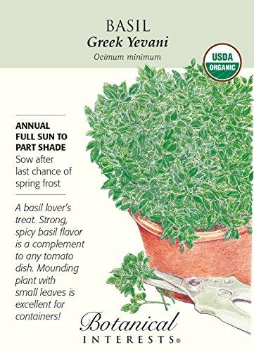 (Greek Yevani Basil Seeds - 500 mg - Organic Herb)