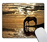 Smooffly Gaming Mouse Pad Custom,Horse Nature Personality Desings Rectangle Non-Slip Rubber Mouse Pads 9.5 X 7.9 Inch (240mmX200mmX3mm)