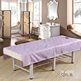 LWZY Linens Massage table sheet,waterproof sheets,spa linens,set of 2,special sheets for beauty sheets/water and oil proof sheets-B 190x80cm(75x31inch)