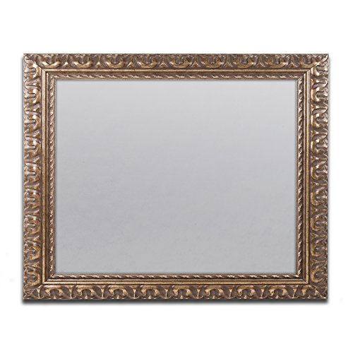 Trademark Fine Art Heavy Duty 16x20 Gold Ornate Picture Frame (Picture Gold Frames Ornate)