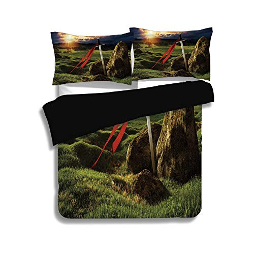 iPrint Black Duvet Cover Set Twin Size,King,Arthur Camelot Legend Myth in England Ireland Fields Invincible Sword Image,Green Blue and Red,Decorative 3 Pcs Bedding Set by 2 Pillow Shams