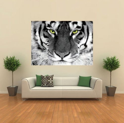 White Tiger Arty Eye Giant Animal Poster Print