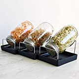 Seed Sprouting Jar Kit - 3 Sprouter Mason Jars with Screen Lids Stands and Trays - Sprout Germinator Set to Grow Your Own Organic Alfalfa Brocolli Microgreens Beans Seeds Sprouts