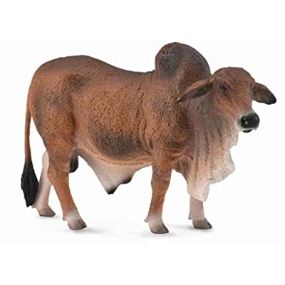 Collecta Red Brahman Bull: Toys & Games