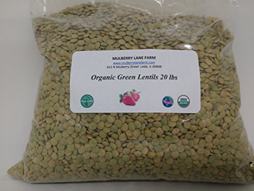 Green Lentils 20 lbs (Twenty pounds) USDA Certified Organic, Non-GMO, BULK by Mulberry Lane Farms