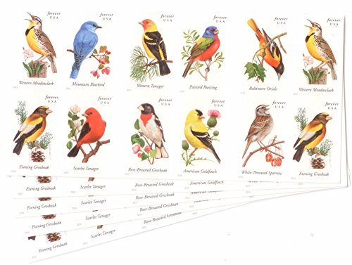 USPS Forever Stamps Songbirds, 100 Stamps (5 Booklets of 20)