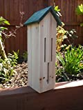Butterfly Hotel - Butterfly House - Insect viewer for Butterflies and Moths - This insect house is ideal for butterfly watching and a great hibernation box to protect them.