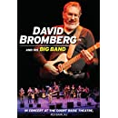 David Bromberg and His Big Band In Concert at the Count Basie Theatre