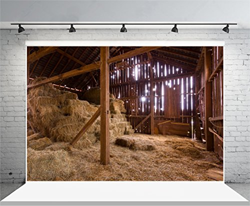 Laeacco 7x5ft Vinyl Photography Background Shabby Old Barn with Sun Streaming from Outside Straw Hay on Floor Hayloft Scene Countryside Adults Art Photos Shooting Video Studio Props 2.2x1.5m (Nativity Backdrop)