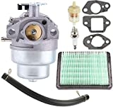 HASMX GCV160 Carburetor Maintenance Kit for 16100-Z0L-023 Honda GCV160A GCV160LA GCV160LA0 GCV160LE - HRB216 HRR216 HRS216 HRT216 HRZ216 Lawn Mower Engine with Fuel & Air Filter Carburetor Accessories