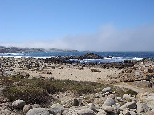 (Home Comforts Peel-n-Stick Poster of Coast Carmel Coastline Water 17 Mile Drive Pacific Vivid Imagery Poster 24 x 16 Adhesive Sticker Poster Print )