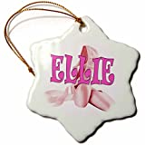 3dRose RinaPiro - Kids - Ellie. Pink Ballet Shoes. Ballerina. - 3 inch Snowflake Porcelain Ornament (orn_261429_1)