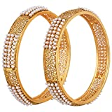 Product review for Crunchy Fashion Bollywood Style Party Wear Traditional Indian Jewelry Gold Bangle Set for Women