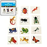 Nature Temporary Tattoos - Insects and Reptiles (6 dz) Model: 39-599, Toys & Games for Kids & Child