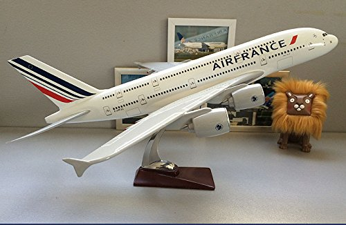 TANG DYNASTY(TM) 36cm Air Bus A380 Air France ABS Resin Model Plane Model Plane (Air France Plane)