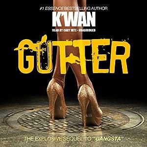 Gutter Audiobook