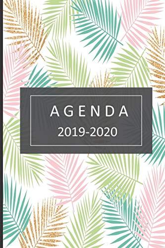 Libro : agenda lindo planificador 2019-2020 del 1 de  (9249)