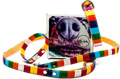 Mr. Licks Best Friend Set - Matching Friendship Dog Collar Leash Bracelet - Canvas Leather Material - Sizes Available - Dog Lover Gift Set - Leather Rainbow Collar