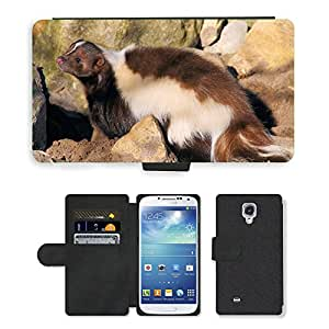 PU LEATHER case coque housse smartphone Flip bag Cover protection // M00109477 Skunk lindo de Brown Piel Dulce // Samsung Galaxy S4 S IV SIV i9500