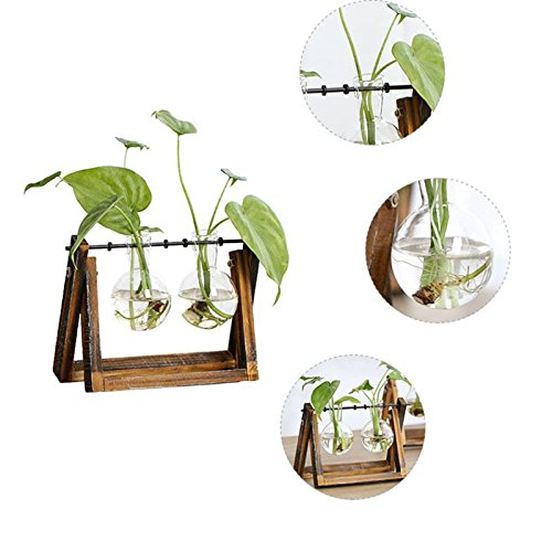 TOOGOO Creative vase Plant Glass hydroponic Container Farm Decorative Flowerpot Home Decorations