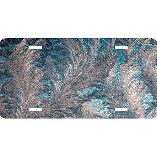 Patterns Frosty Pattern Glass Frost Ice Customized Auto Car Tag Sign 4 Holes Aluminum Metal License Plate Cover 12 x 6 Inch