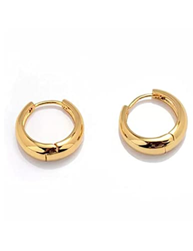 7fe1e53f5 GBR Bollywood Style Gold Hoop Earrings For Men And Boys Man Unisex ...