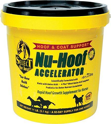 Nu Hoof Maximizer - RICHDEL 784299591103 Nu-Hoof Accelerator Hoof & Coat Support for Horses, 11 lb
