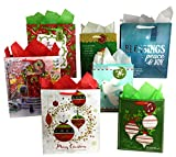 Arts & Crafts : Set of Christian Religious Christmas Gift Bags and Tissue Paper (7 Bags + Tissue, Bible Verse)