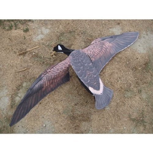 Sillosocks Flapping Canada Snow Goose Decoy, -