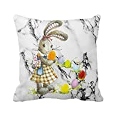 Throw Pillow Covers 18X18 Bunny with Colored Eggs Easter Day Lettering Pillow Case Soft Cushion Cover Square Hidden Zipper Home Cushion Decorative Pillowcase for Festival Holiday Feast Decor (B)