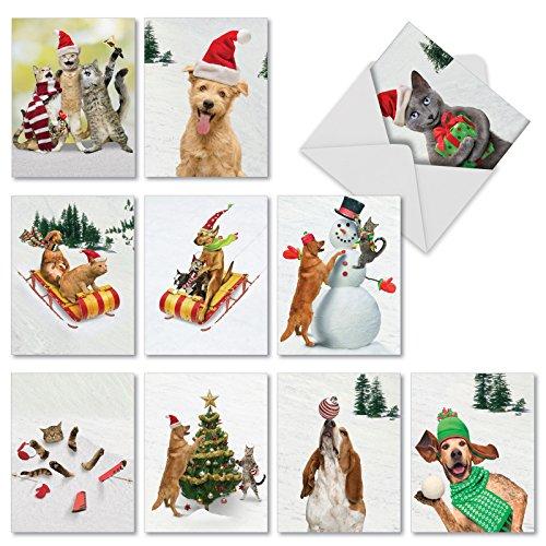 Funny Assortment of 10 Holiday Cards with Envelopes (4