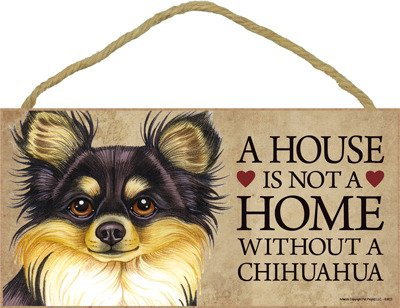 SJT ENTERPRISES, INC. A House is not a Home Without a Chihuahua (Long haired, Black tan) Wood Sign Plaque 5