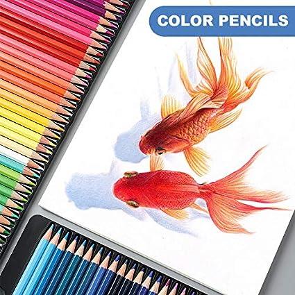Couleurs vives pr/é-taill/ées pour adultes et enfants 36 couleurs. Lot de 72 crayons de couleur /à base dhuile
