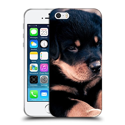 Super Galaxy Schutz Hülle TPU Case Schutzhülle Silikon Tasche Dünn Transparent // V00003220 niedliche Rottweiler Welpen // Apple iPhone 5 5S 5G SE