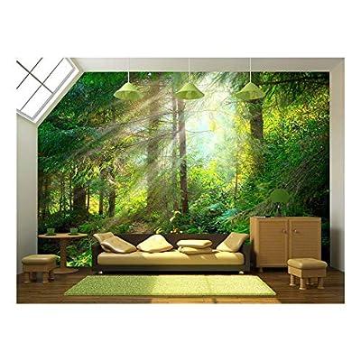 Beautiful Forest Wallpaper Wall Mural Decor - Wall Murals