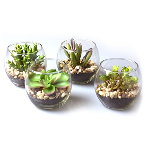 MyGift Set of 4 Mini Artificial Succulent Plants w/Round Glass Terrarium Vases