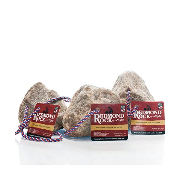 REDMOND - Rock on a Rope Unrefined Salt Rock for Horses 3 to 5 lbs (3 Pack) 1