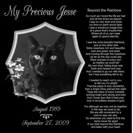 12 x 12 Lazer Gifts Personalized Black Granite Pet Memorial Marker Style Jesse