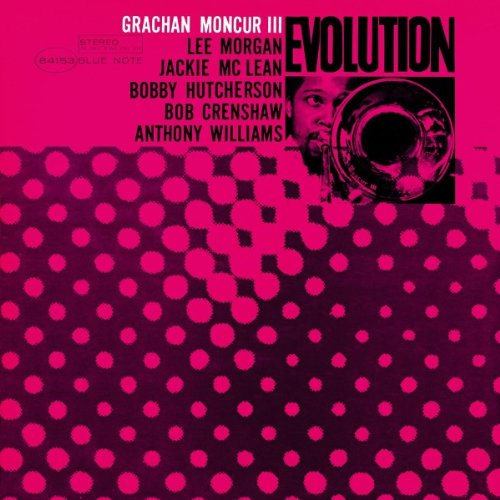 Evolution [12 inch Analog]                                                                                                                                                                                                                                                    <span class=